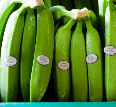 Specifications bananas