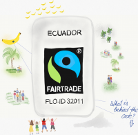 Fairtrade bananas label